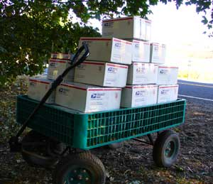 Grey Duck Garlic, mail cart with boxes of gourmet garlic ready to ship